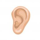 گوش - میکروفن